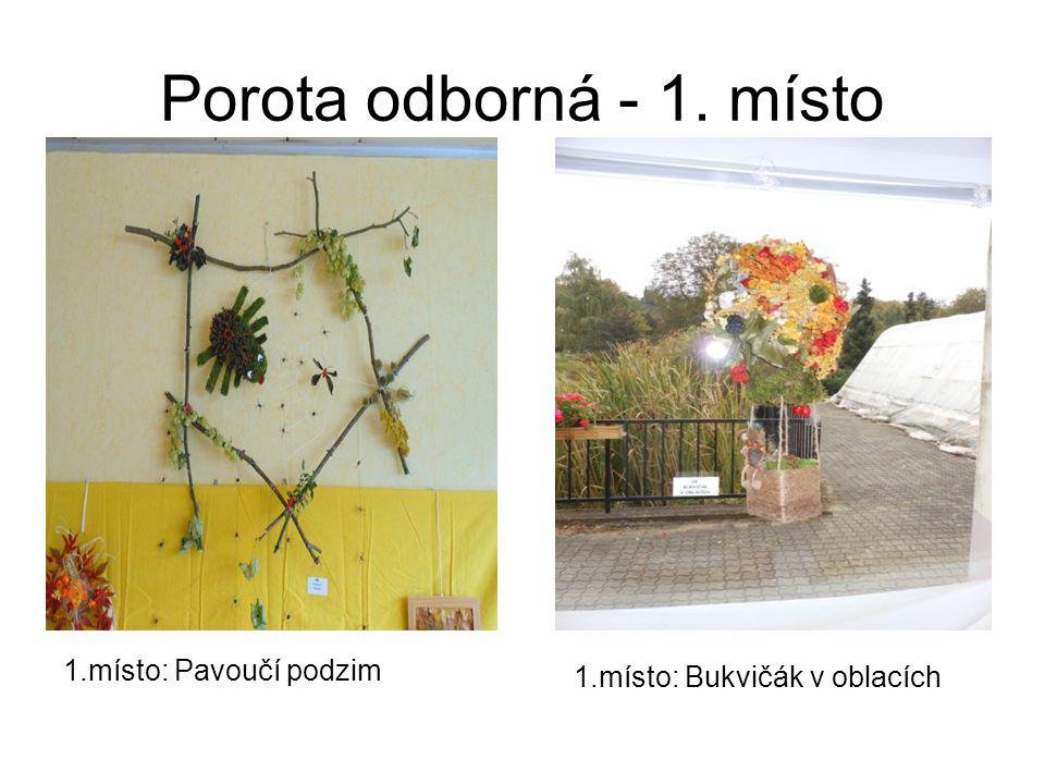Porota odborná - 1. místo 1.místo: Bukvičák v oblacích 1.místo: Pavoučí podzim