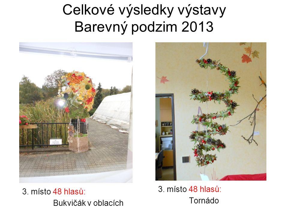 Celkové výsledky výstavy Barevný podzim 2013 3. místo 48 hlasů: Bukvičák v oblacích 3.