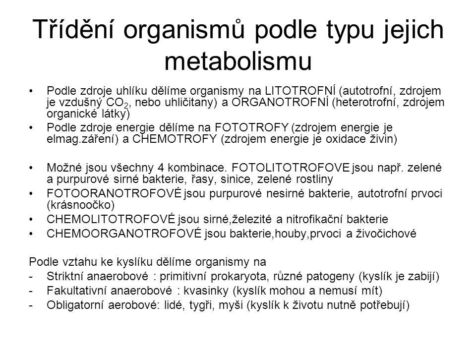 Třídění organismů podle typu jejich metabolismu Podle zdroje uhlíku dělíme organismy na LITOTROFNÍ (autotrofní, zdrojem je vzdušný CO 2, nebo uhličita
