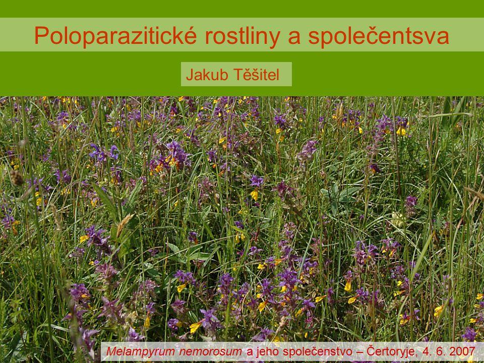 Poloparazitické rostliny = parazitické rostliny, které připravují hostitele o vodu a minerální živiny, zatímco zisk organického uhlíku je (plus mínus) zajišťován vlastní fotosyntetickou aktvitou.