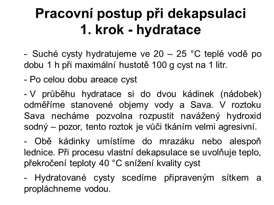 Pracovní postup při dekapsulaci 1. krok - hydratace - Suché cysty hydratujeme ve 20 – 25 °C teplé vodě po dobu 1 h při maximální hustotě 100 g cyst na