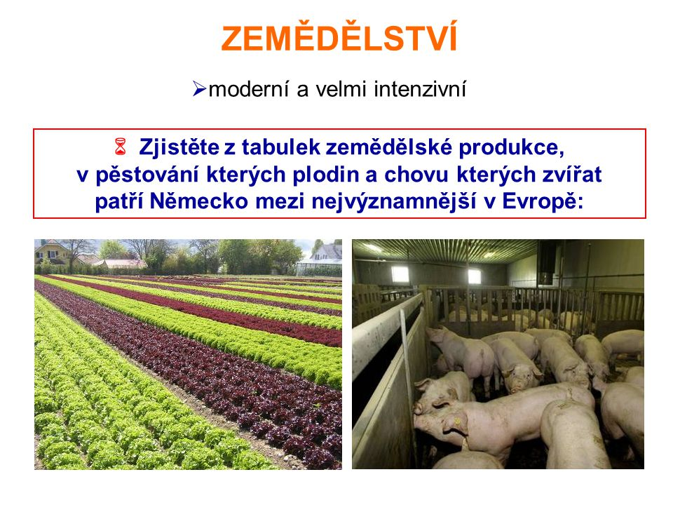 ZEMĚDĚLSTVÍ  Zjistěte z tabulek zemědělské produkce, v pěstování kterých plodin a chovu kterých zvířat patří Německo mezi nejvýznamnější v Evropě:  moderní a velmi intenzivní
