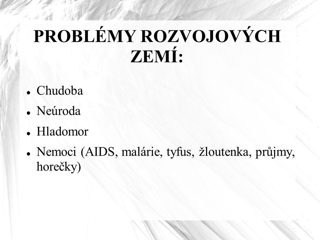 PROBLÉMY ROZVOJOVÝCH ZEMÍ: Chudoba Neúroda Hladomor Nemoci (AIDS, malárie, tyfus, žloutenka, průjmy, horečky)