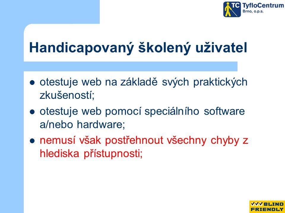 Handicapovaný školený uživatel otestuje web na základě svých praktických zkušeností; otestuje web pomocí speciálního software a/nebo hardware; nemusí však postřehnout všechny chyby z hlediska přístupnosti;