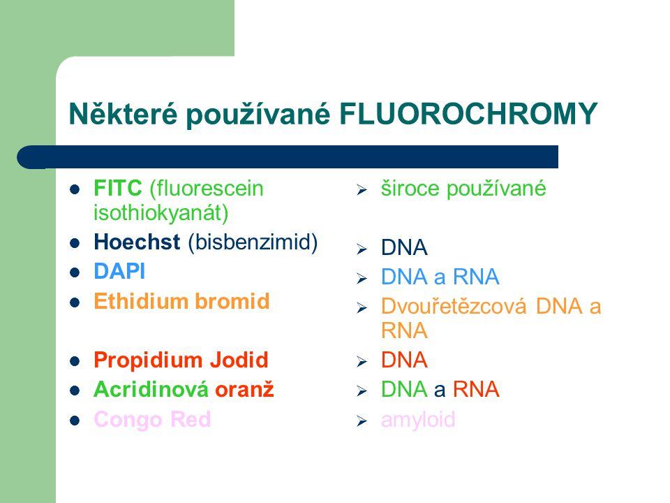 Některé používané FLUOROCHROMY FITC (fluorescein isothiokyanát) Hoechst (bisbenzimid) DAPI Ethidium bromid Propidium Jodid Acridinová oranž Congo Red