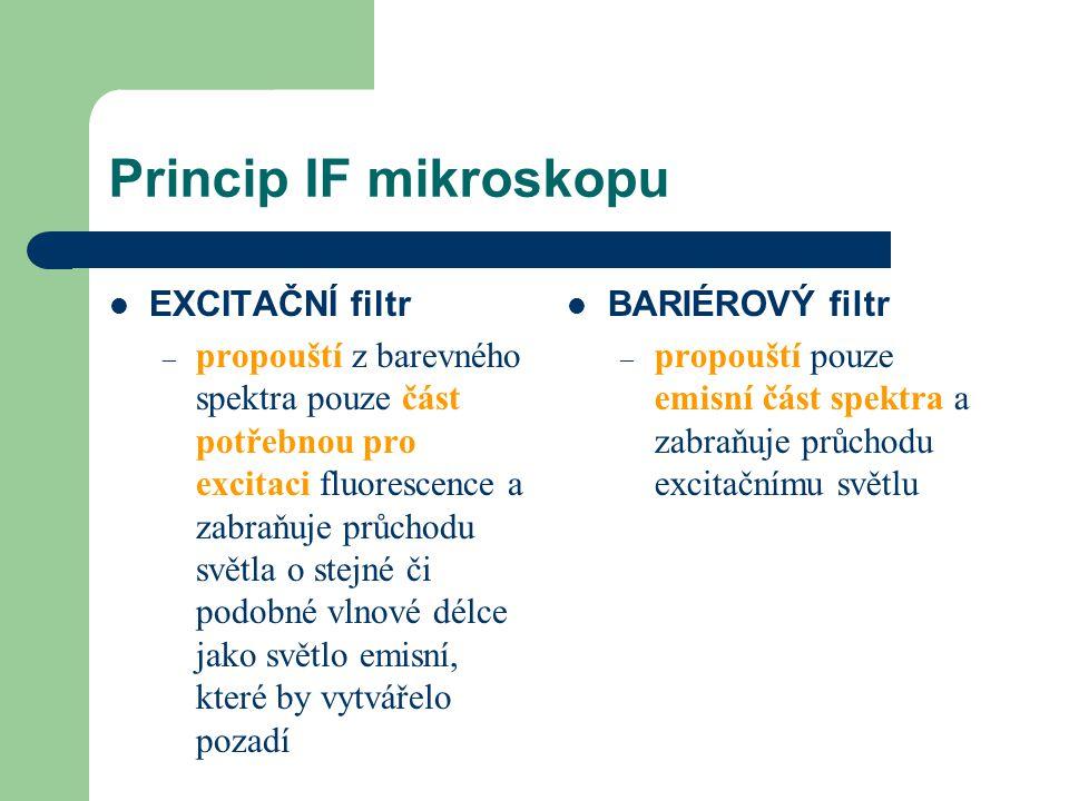 Princip IF mikroskopu EXCITAČNÍ filtr – propouští z barevného spektra pouze část potřebnou pro excitaci fluorescence a zabraňuje průchodu světla o ste
