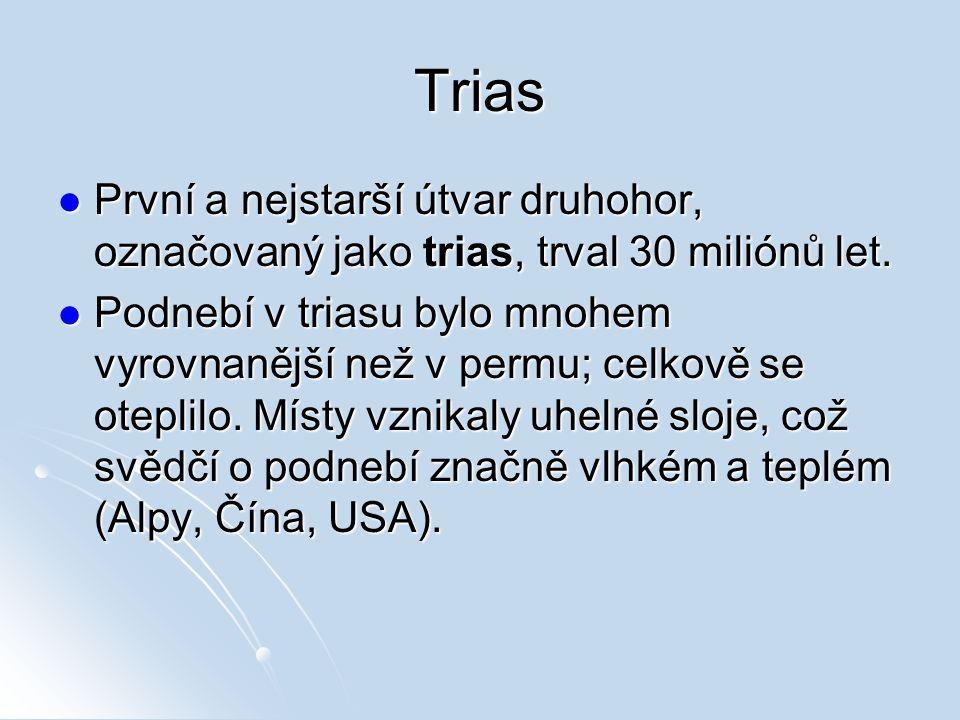 Trias První a nejstarší útvar druhohor, označovaný jako trias, trval 30 miliónů let. První a nejstarší útvar druhohor, označovaný jako trias, trval 30