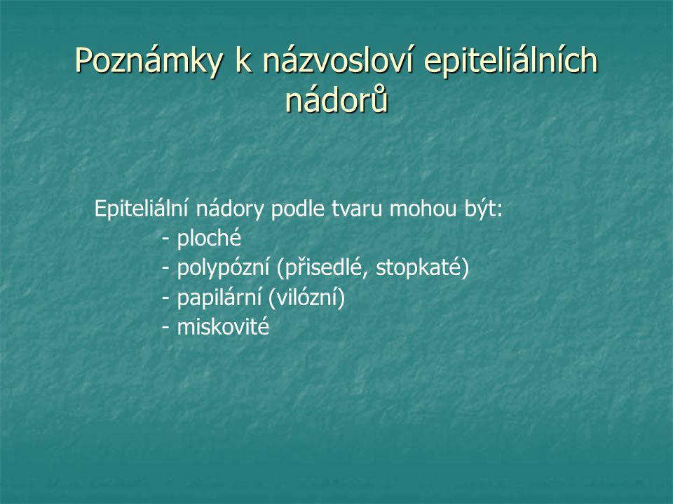 Poznámky k názvosloví epiteliálních nádorů Epiteliální nádory podle tvaru mohou být: - ploché - polypózní (přisedlé, stopkaté) - papilární (vilózní) -