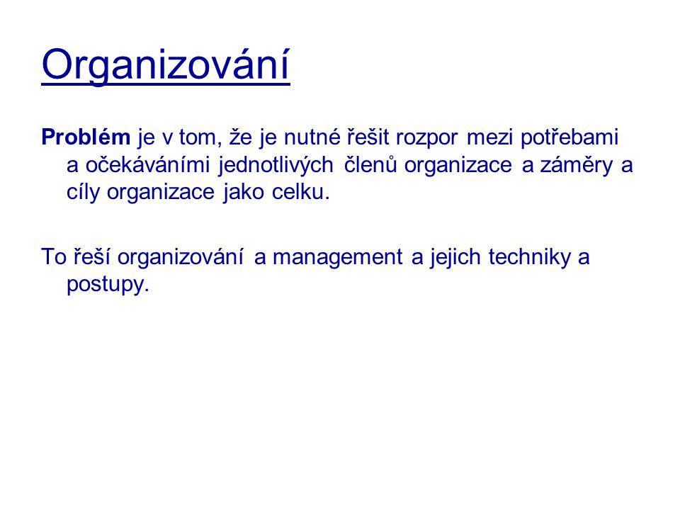 Organizační architektura Plochá decentralizovaná organizační struktura