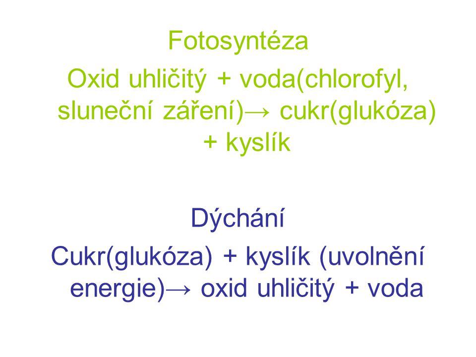Fotosyntéza Oxid uhličitý + voda(chlorofyl, sluneční záření)→ cukr(glukóza) + kyslík Dýchání Cukr(glukóza) + kyslík (uvolnění energie)→ oxid uhličitý