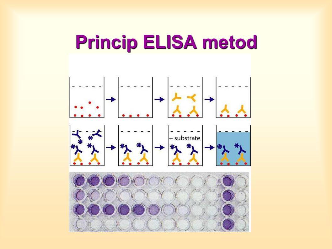 Princip ELISA metod