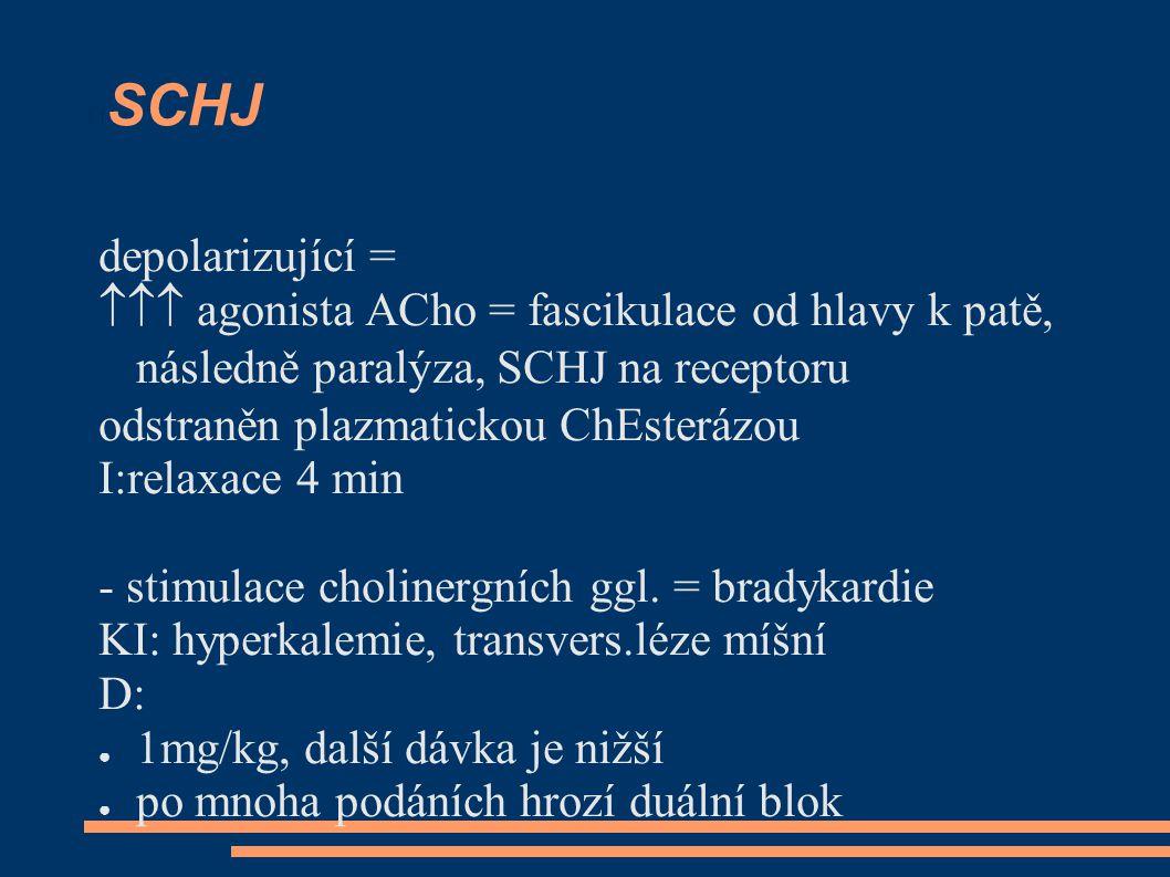 SCHJ depolarizující =  agonista ACho = fascikulace od hlavy k patě, následně paralýza, SCHJ na receptoru odstraněn plazmatickou ChEsterázou I:relaxace 4 min - stimulace cholinergních ggl.