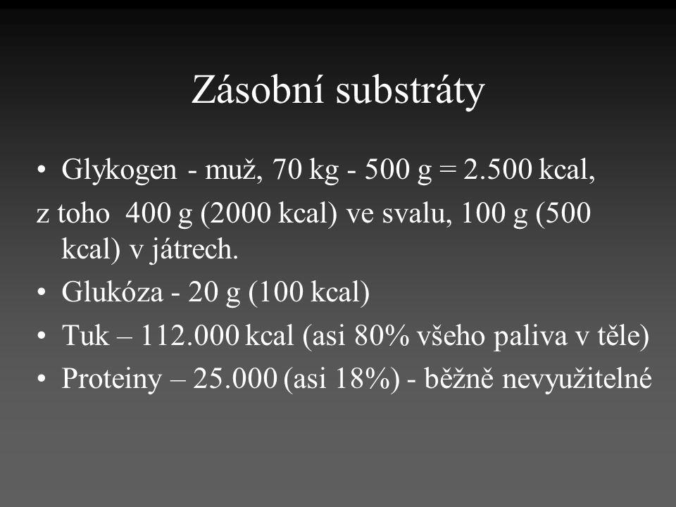 Zásobní substráty Glykogen - muž, 70 kg - 500 g = 2.500 kcal, z toho 400 g (2000 kcal) ve svalu, 100 g (500 kcal) v játrech. Glukóza - 20 g (100 kcal)