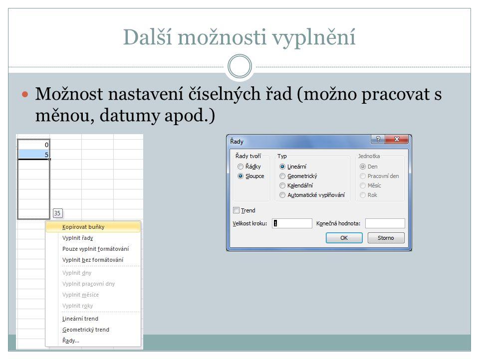 Další možnosti vyplnění Možnost nastavení číselných řad (možno pracovat s měnou, datumy apod.)
