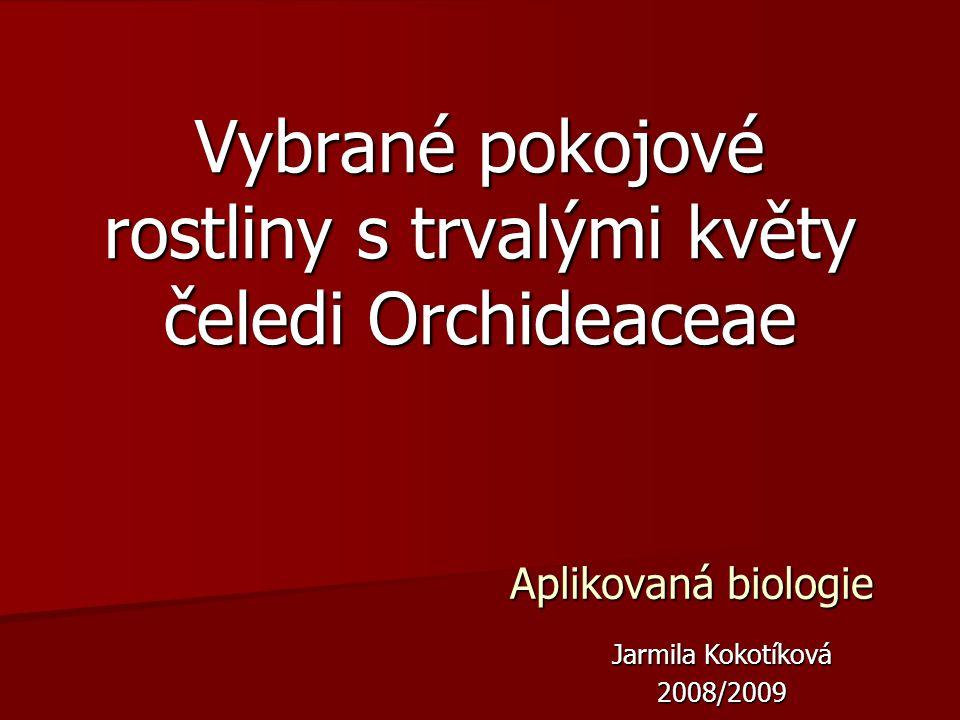 Aplikovaná biologie Vybrané pokojové rostliny s trvalými květy čeledi Orchideaceae Jarmila Kokotíková 2008/2009