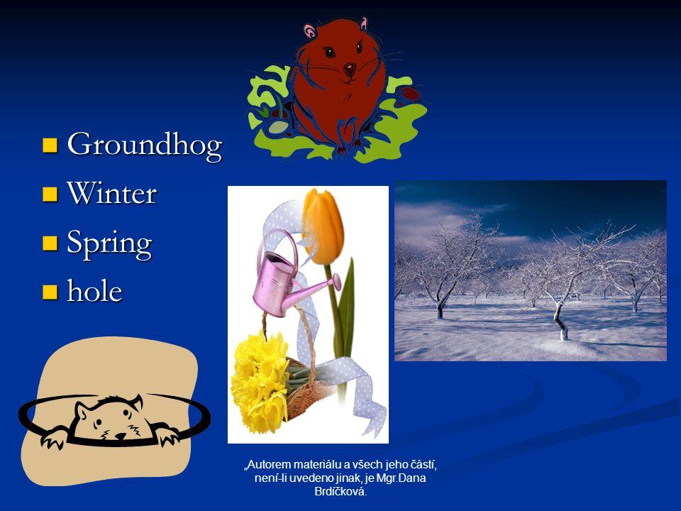 """Groundhog Groundhog Winter Winter Spring Spring hole hole """"Autorem materiálu a všech jeho částí, není-li uvedeno jinak, je Mgr.Dana Brdíčková."""