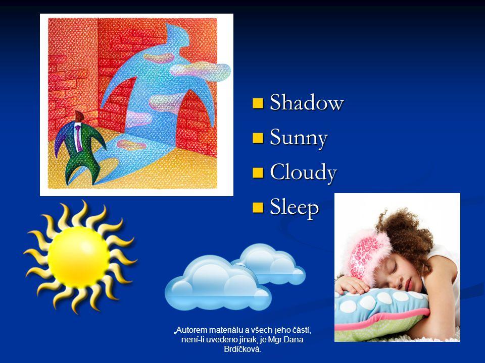 """Shadow Sunny Cloudy Sleep """"Autorem materiálu a všech jeho částí, není-li uvedeno jinak, je Mgr.Dana Brdíčková."""