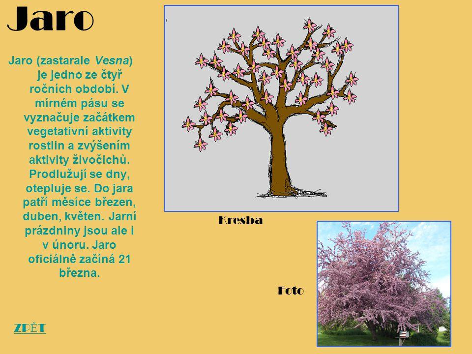 Jaro Jaro (zastarale Vesna) je jedno ze čtyř ročních období. V mírném pásu se vyznačuje začátkem vegetativní aktivity rostlin a zvýšením aktivity živo