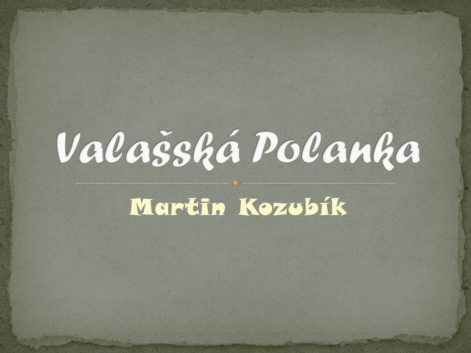 Martin Kozubík