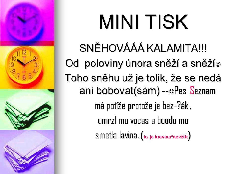 MINI TISK SNĚHOVÁÁÁ KALAMITA!!.