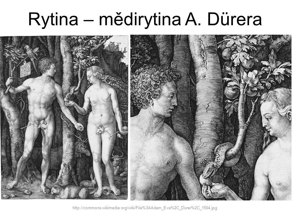 Rytina – mědirytina A. Dürera http://commons.wikimedia.org/wiki/File%3AAdam_Eva%2C_Durer%2C_1504.jpg