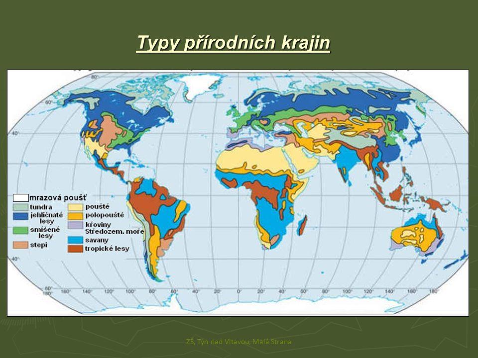 Typy přírodních krajin ► 1) tropické lesy - výskyt: okolo rovníku (Amazonie, Guinejský záliv…) - flóra: stromy kterým neopadává listí, mnoho květin - fauna: hmyz, motýly, hadi, opice, papoušci ► 2) savany - výskyt: tropický pás (větší část Afriky…) - flóra: vysoké trávy, baobab - fauna: lev, slon, nosorožec, zebra, klokan ► 3) pouště - výskyt: okolo obratníků (JZ Asie, S Afrika…) - fauna a flóra: většinou bez rostlin, kaktusy, hadi, velbloudi ► 4) stepi - výskyt: mírný pás - fauna a flóra: hlavně trávy, zajíci, hraboši, bizoni ZŠ, Týn nad Vltavou, Malá Strana