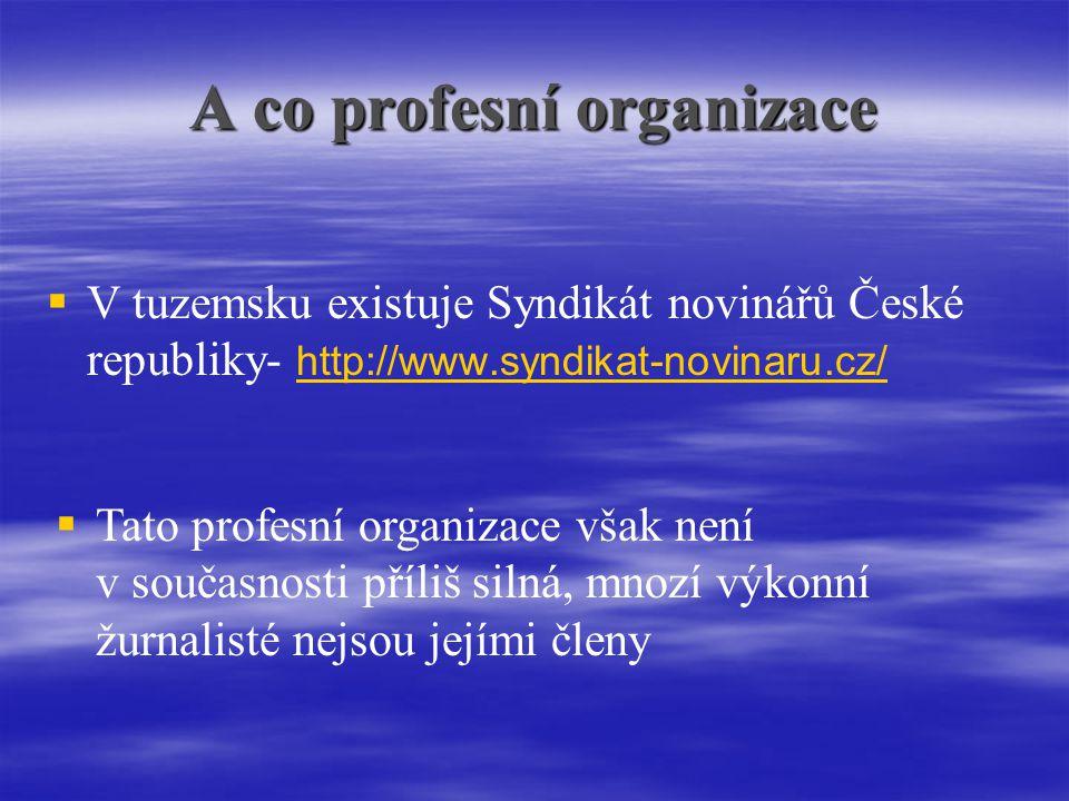 A co profesní organizace   V tuzemsku existuje Syndikát novinářů České republiky- http://www.syndikat-novinaru.cz/ http://www.syndikat-novinaru.cz/  Tato profesní organizace však není v současnosti příliš silná, mnozí výkonní žurnalisté nejsou jejími členy
