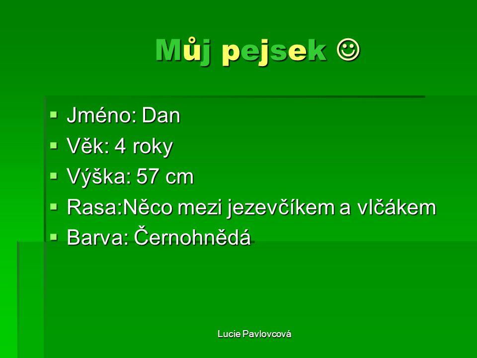 Lucie Pavlovcová Můj pejsek Můj pejsek JJJJméno: Dan VVVVěk: 4 roky VVVVýška: 57 cm RRRRasa:Něco mezi jezevčíkem a vlčákem BBBBarv