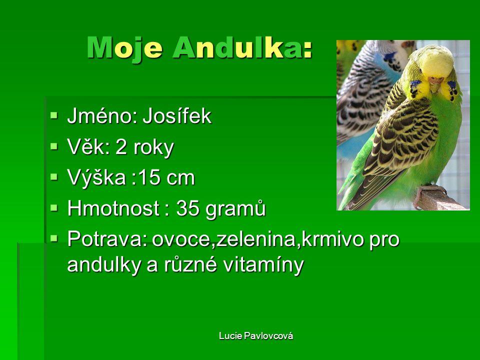 Moje Andulka: JJJJméno: Josífek VVVVěk: 2 roky VVVVýška :15 cm HHHHmotnost : 35 gramů PPPPotrava: ovoce,zelenina,krmivo pro andulk