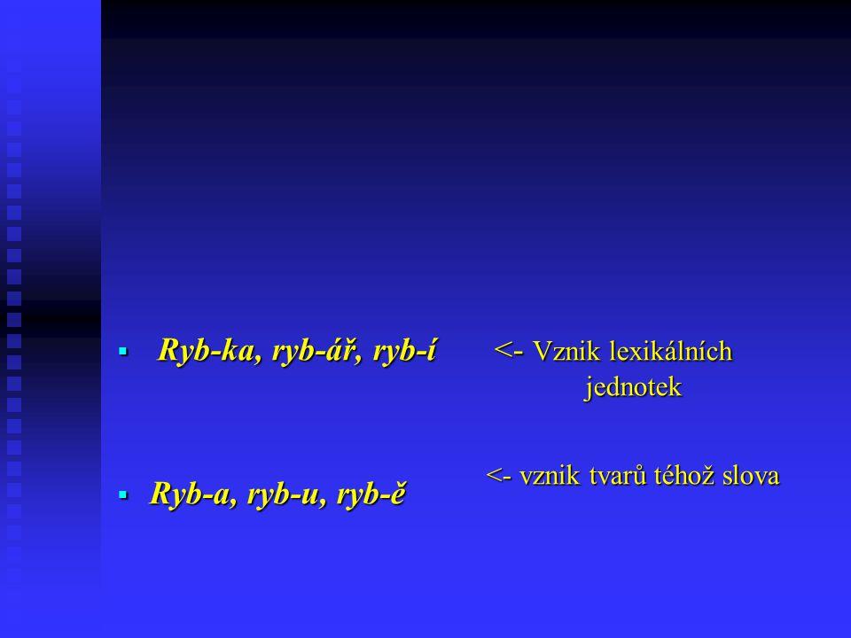  Ryb-ka, ryb-ář, ryb-í  Ryb-a, ryb-u, ryb-ě <- Vznik lexikálních jednotek <- vznik tvarů téhož slova