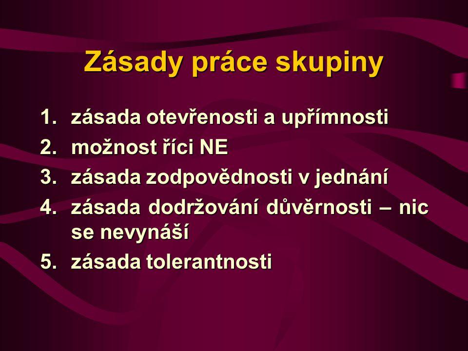 Zásady práce skupiny 1.zásada otevřenosti a upřímnosti 2.možnost říci NE 3.zásada zodpovědnosti v jednání 4.zásada dodržování důvěrnosti – nic se nevynáší 5.zásada tolerantnosti