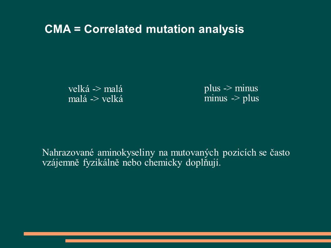 CMA = Correlated mutation analysis velká -> malá malá -> velká plus -> minus minus -> plus Nahrazované aminokyseliny na mutovaných pozicích se často vzájemně fyzikálně nebo chemicky doplňují.