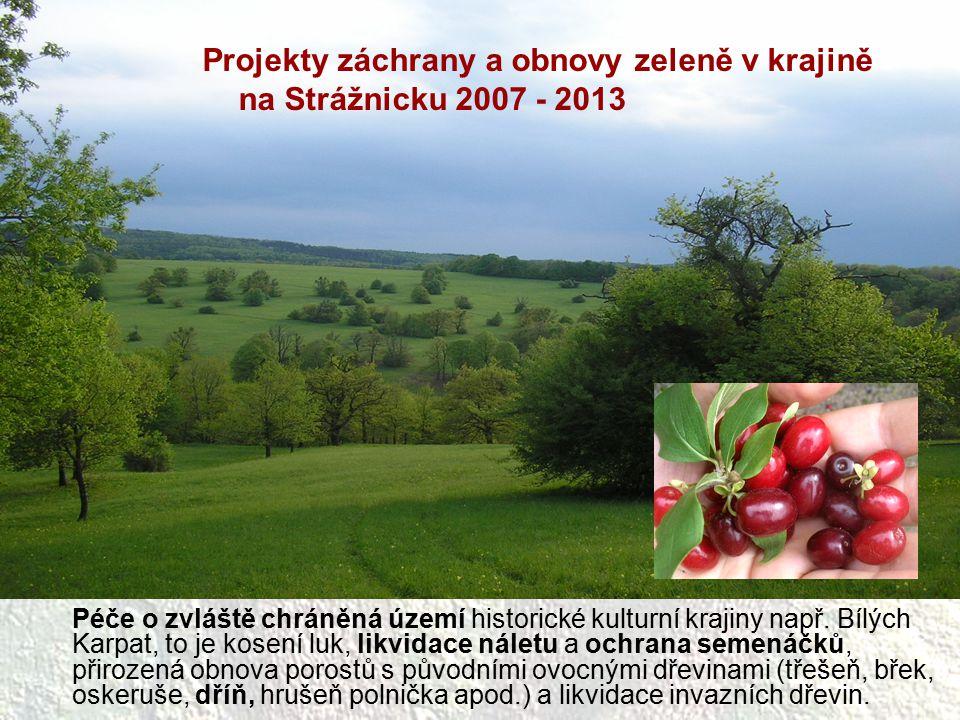 Péče o zvláště chráněná území historické kulturní krajiny např. Bílých Karpat, to je kosení luk, likvidace náletu a ochrana semenáčků, přirozená obnov