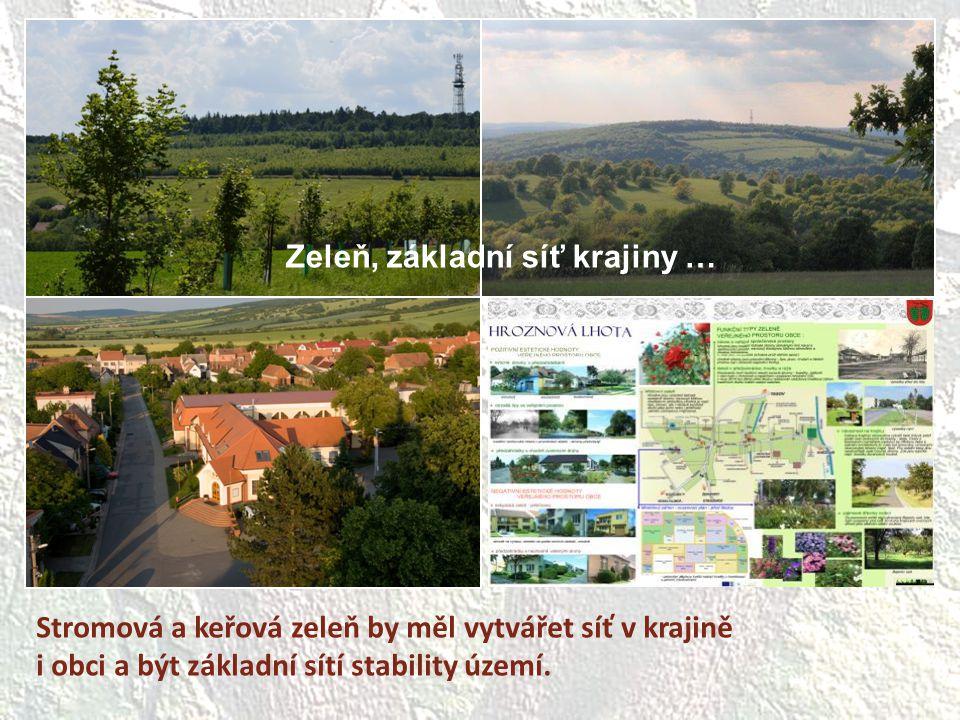 Stromová a keřová zeleň by měl vytvářet síť v krajině i obci a být základní sítí stability území. Zeleň, základní síť krajiny …