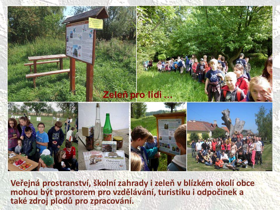Veřejná prostranství, školní zahrady i zeleň v blízkém okolí obce mohou být prostorem pro vzdělávání, turistiku i odpočinek a také zdroj plodů pro zpr
