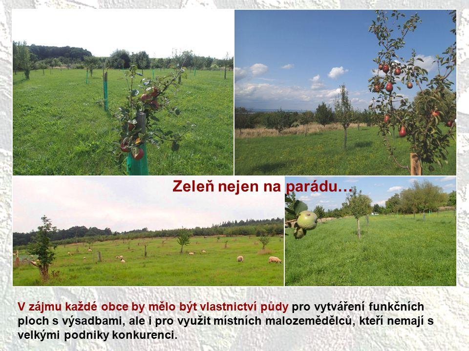 V zájmu každé obce by mělo být vlastnictví půdy pro vytváření funkčních ploch s výsadbami, ale i pro využit místních malozemědělců, kteří nemají s vel