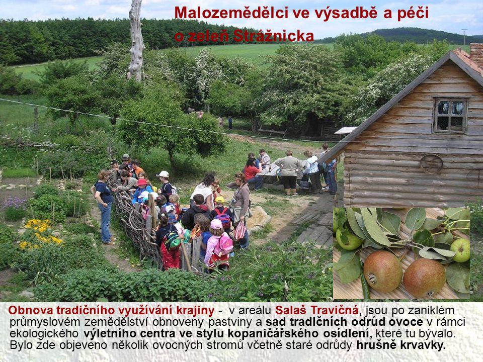 Obnova tradičního využívání krajiny - v areálu Salaš Travičná, jsou po zaniklém průmyslovém zemědělství obnoveny pastviny a sad tradičních odrůd ovoce