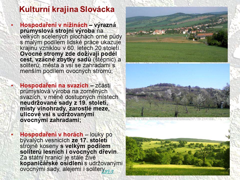 Kulturní krajina Slovácka Hospodaření v nížinách – výrazná průmyslová strojní výroba na velkých scelených plochách orné půdy s malým podílem lidské pr
