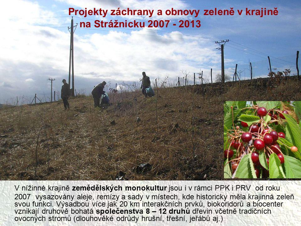 V nížinné krajině zemědělských monokultur jsou i v rámci PPK i PRV od roku 2007 vysazovány aleje, remízy a sady v místech, kde historicky měla krajinn