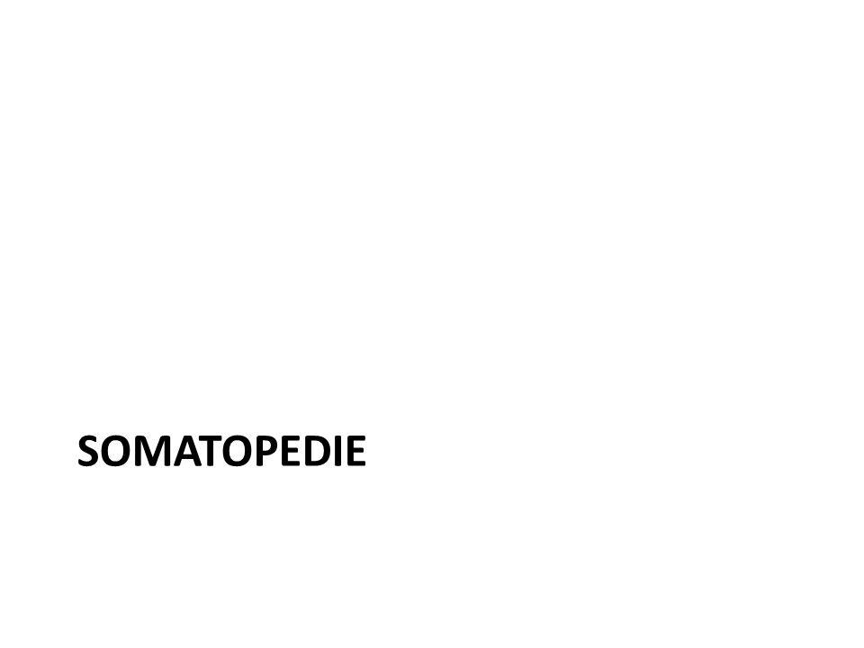 SOMATOPEDIE