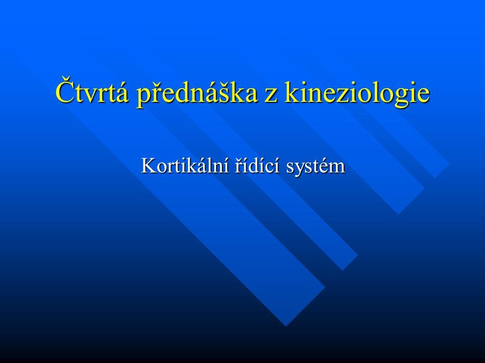 Čtvrtá přednáška z kineziologie Kortikální řídící systém