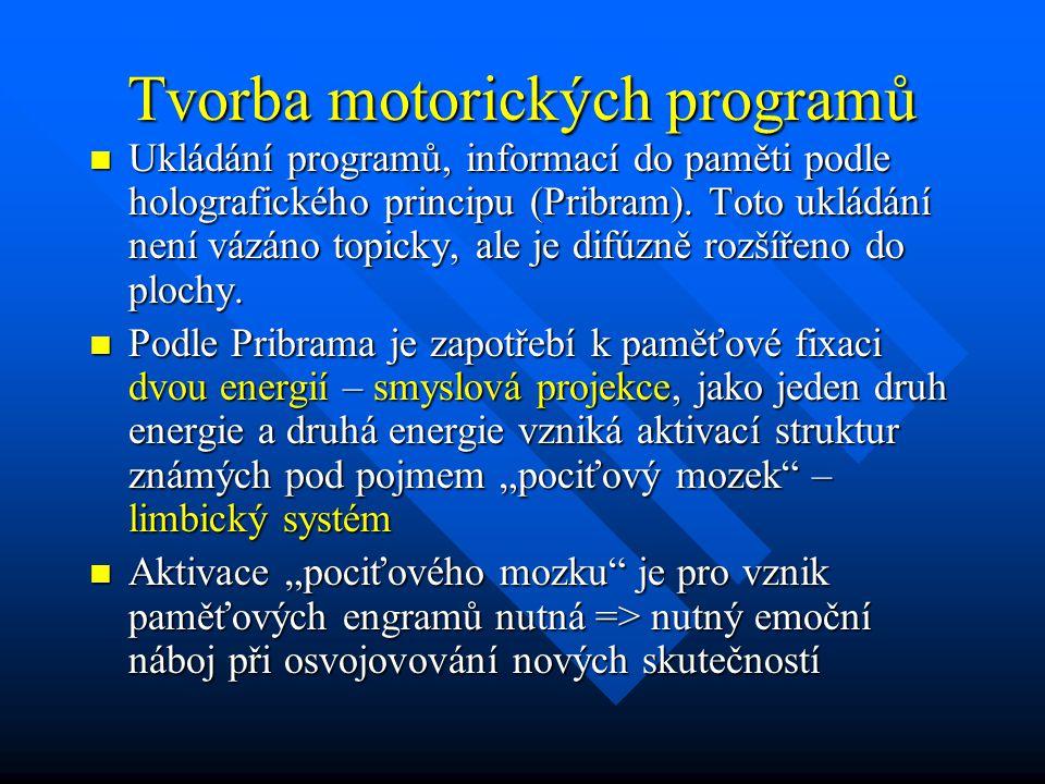 Tvorba motorických programů Ukládání programů, informací do paměti podle holografického principu (Pribram). Toto ukládání není vázáno topicky, ale je