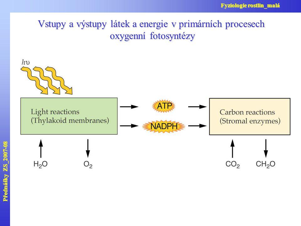 Vstupy a výstupy látek a energie v primárních procesech oxygenní fotosyntézy oxygenní fotosyntézy Přednášky ZS_2007-08 Fyziologie rostlin_malá
