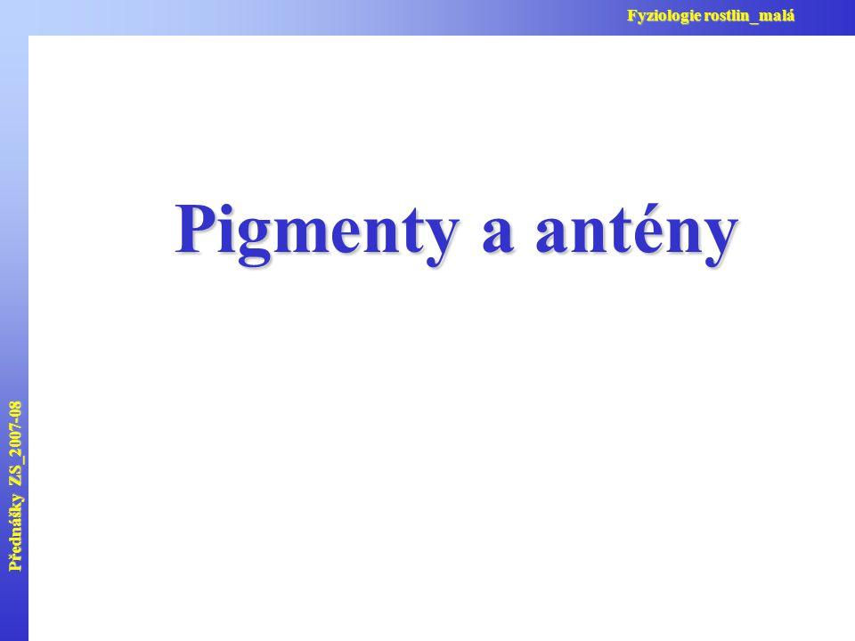 Přednášky ZS_2007-08 Fyziologie rostlin_malá Pigmenty a antény