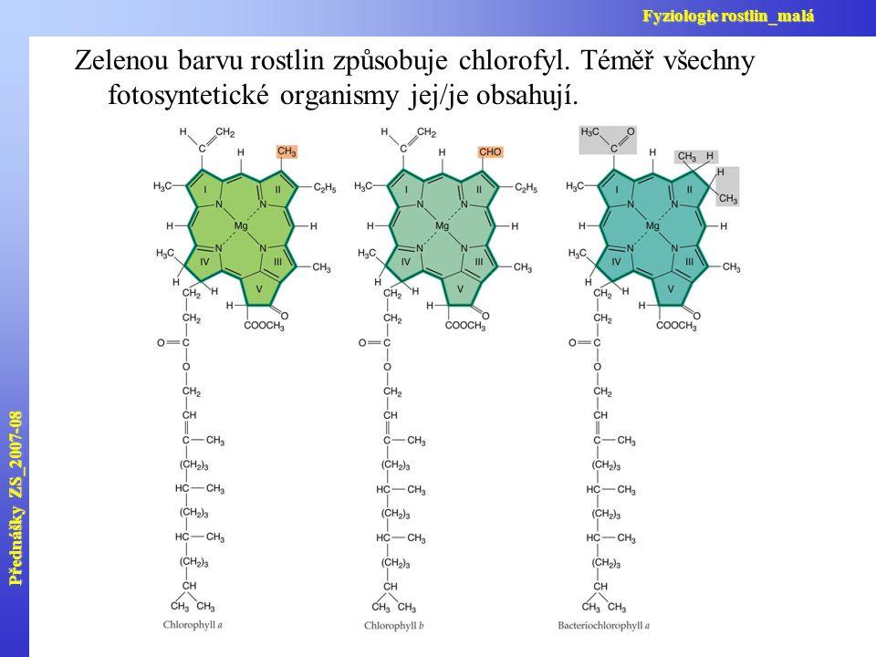 Zelenou barvu rostlin způsobuje chlorofyl. Téměř všechny fotosyntetické organismy jej/je obsahují. Přednášky ZS_2007-08 Fyziologie rostlin_malá