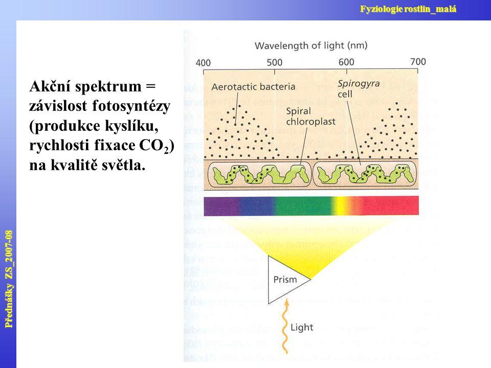 Přednášky ZS_2007-08 Fyziologie rostlin_malá Akční spektrum = závislost fotosyntézy (produkce kyslíku, rychlosti fixace CO 2 ) na kvalitě světla.