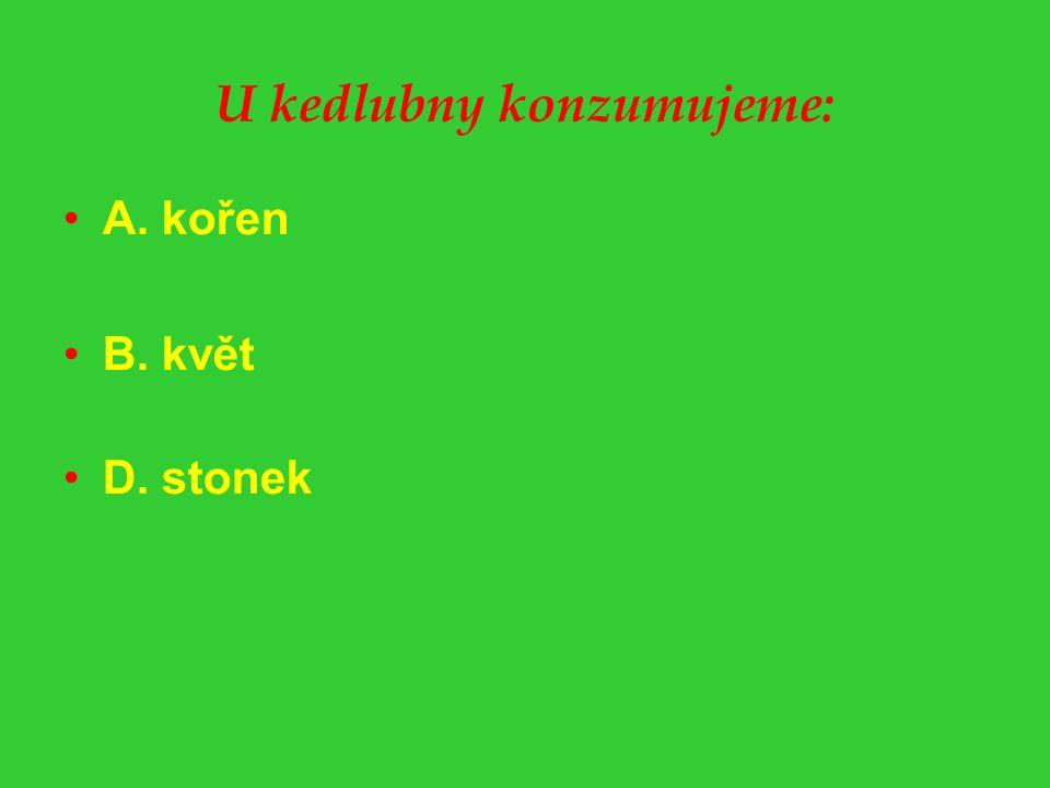 U kedlubny konzumujeme: A. kořen B. květ D. stonek