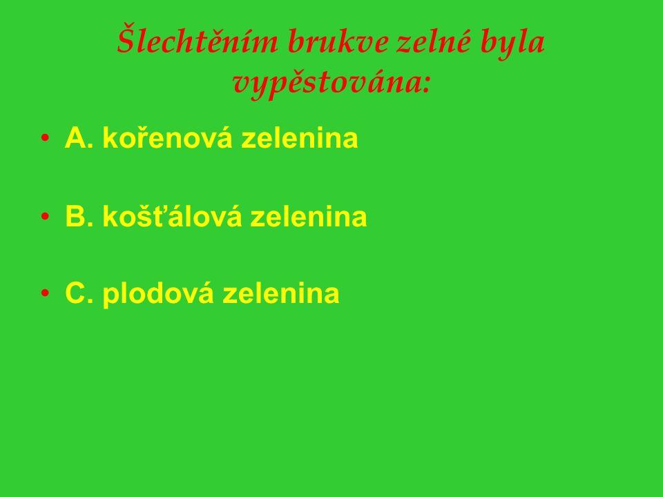 Šlechtěním brukve zelné byla vypěstována: A. kořenová zelenina B. košťálová zelenina C. plodová zelenina