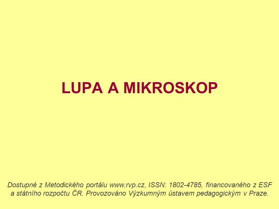 LUPA A MIKROSKOP Dostupné z Metodického portálu www.rvp.cz, ISSN: 1802-4785, financovaného z ESF a státního rozpočtu ČR. Provozováno Výzkumným ústavem