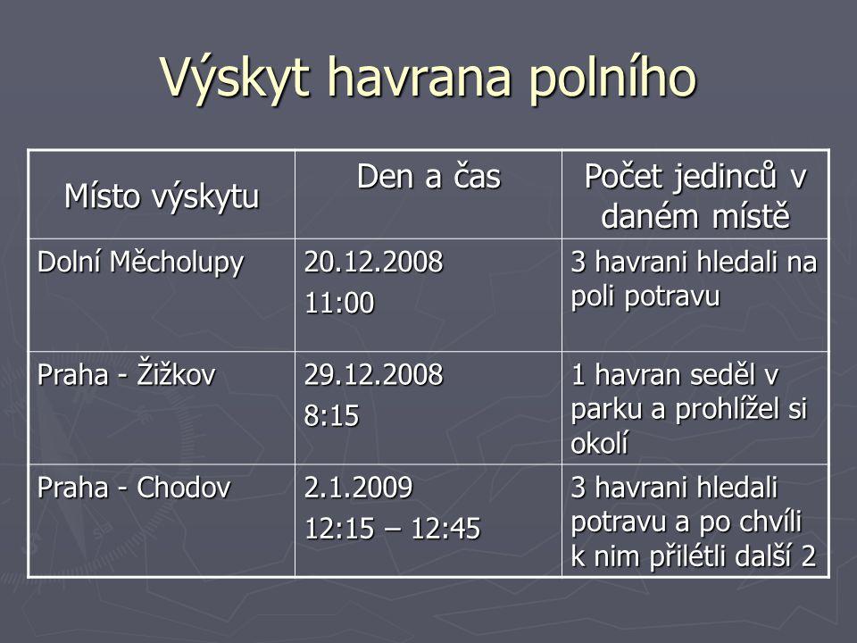 Výskyt havrana polního Místo výskytu Den a čas Počet jedinců v daném místě Dolní Měcholupy 20.12.200811:00 3 havrani hledali na poli potravu Praha - Ž